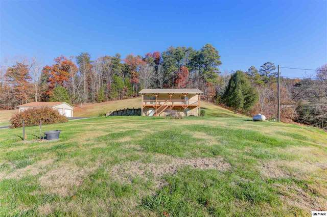 1315 Mccarter Hollow Road, Sevierville, TN 37862 (#231301) :: Century 21 Legacy