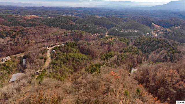 Parcel 002.0 Indian Gap Road, Sevierville, TN 37876 (#231517) :: Colonial Real Estate