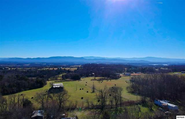 12.32 acres Moore Rd, Dandridge, TN 37725 (#231557) :: Jason White Team | Century 21 Legacy
