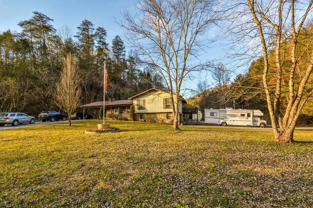 1605 Upper Middle Creek Rd, Sevierville, TN 37876 (#231667) :: Century 21 Legacy