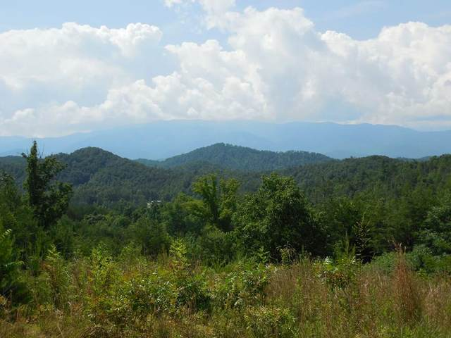 032 Yellow Breeches, Sevierville, TN 37862 (#240003) :: Suzanne Walls with eXp Realty