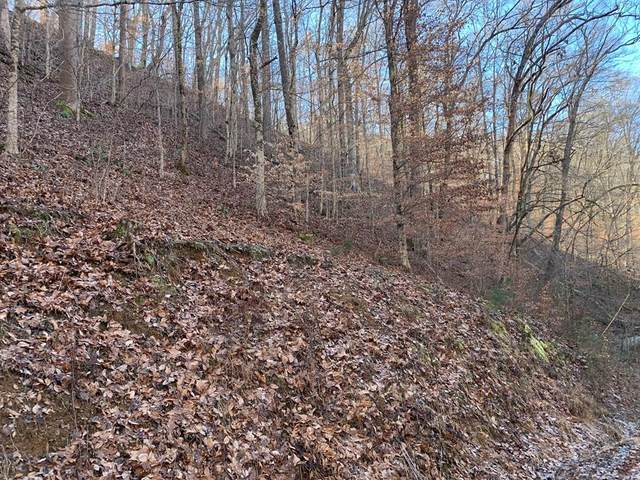 N/A Happy Hollow Lane, Sevierville, TN 37876 (#240185) :: Suzanne Walls with eXp Realty