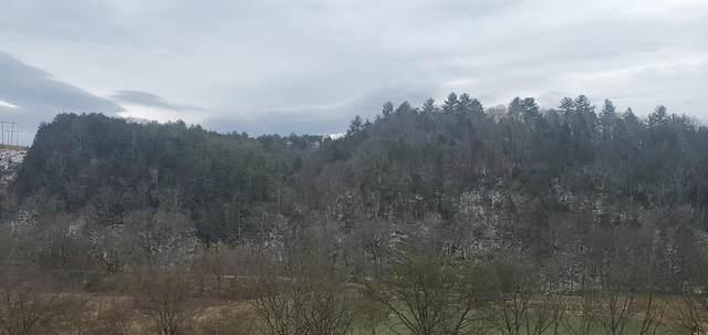 Jones Cove Rd Off, Sevierville, TN 37876 (#240371) :: Colonial Real Estate