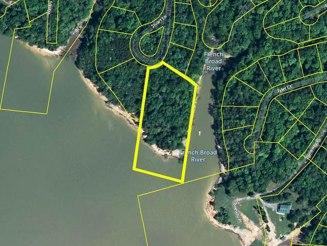 Lot 810+ Sunny Court, Baneberry, TN 37890 (#240776) :: Colonial Real Estate