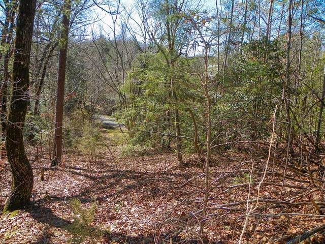 Oldham Springs Way, Sevierville, TN 37876 (#240829) :: Tennessee Elite Realty