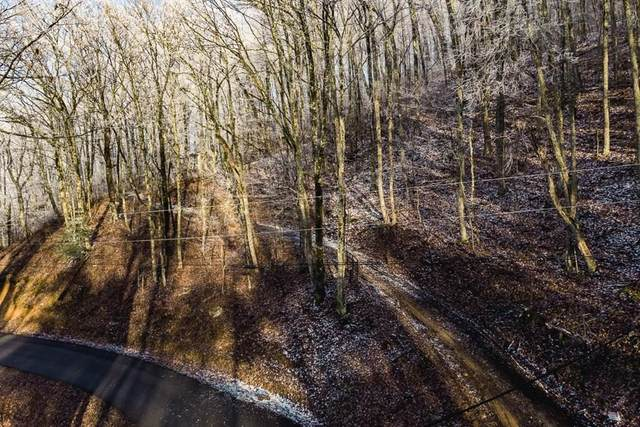 Lot 3 Dupont Springs, Sevierville, TN 37876 (#240840) :: Century 21 Legacy