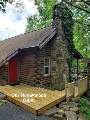 2525 N School House Gap Rd, Sevierville, TN 37876 (#241196) :: Suzanne Walls with eXp Realty