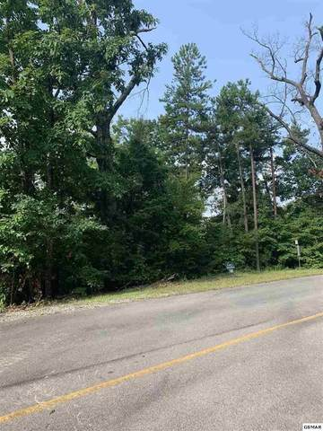 156 E Harmony Hill Lane, Sevierville, TN 37862 (#241507) :: Prime Mountain Properties