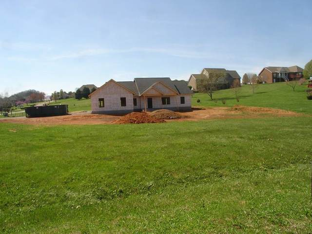 416 Winners Circle, Seymour, TN 37865 (#241529) :: Colonial Real Estate