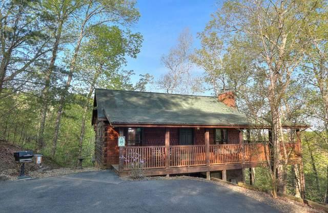 225 Oak Haven Way, Sevierville, TN 37876 (#241574) :: Tennessee Elite Realty