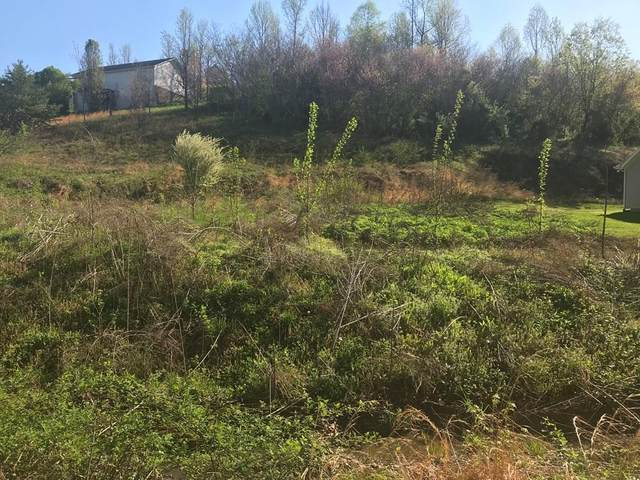 LOT 12 Turkey Hollow Lane, Sevierville, TN 37862 (#241764) :: Century 21 Legacy