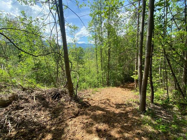 5262 Riversong Way Lots 33 & 34, Sevierville, TN 37876 (#242151) :: The Terrell-Drager Team