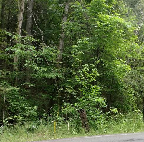 Waldens Creek, Sevierville, TN 37862 (#242226) :: Century 21 Legacy