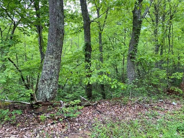 Lot 13 Black Oak Drive, Sevierville, TN 37876 (#242369) :: JET Real Estate