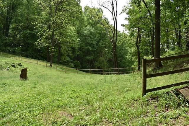 Pine Ct.  15 Lots, Sevierville, TN 37876 (#242469) :: The Terrell-Drager Team