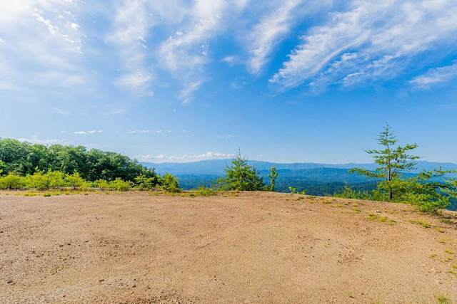 Mountain Ash Way Lot 61, Sevierville, TN 37876 (#242619) :: The Terrell-Drager Team