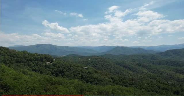 Lot 116E Settlers View Lane, Sevierville, TN 37862 (#242688) :: JET Real Estate