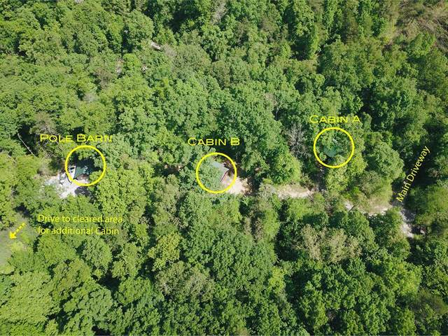 1519 Deer Browse Way, Sevierville, TN 37876 (#242714) :: Colonial Real Estate