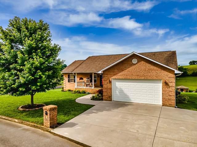 1407 Ellis Woods Loop, Sevierville, TN 37876 (#242921) :: Colonial Real Estate