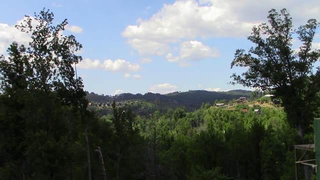 219 Chimney Tops Way, Gatlinburg, TN 37738 (#243060) :: Century 21 Legacy