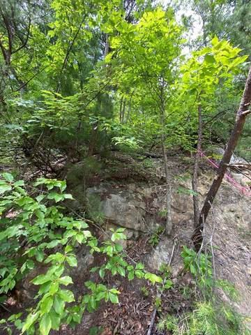 Lot 2 Silverbell Dr, Sevierville, TN 37876 (#243256) :: The Terrell-Drager Team
