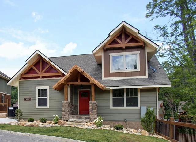 Lot 92 Ginseng Pool Cabin, Sevierville, TN 37862 (#243279) :: The Terrell-Drager Team