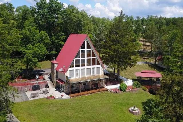 1819 Parrots Chapel Road 21004 Chapel Ro, Sevierville, TN 37876 (#243366) :: Colonial Real Estate
