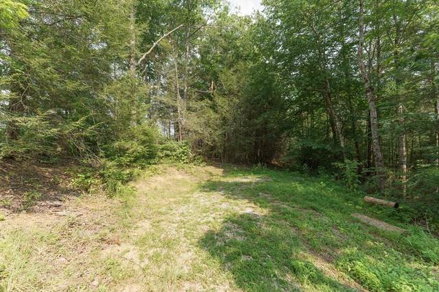 4939 Wakeman Way, Cosby, TN 37722 (#243440) :: Prime Mountain Properties