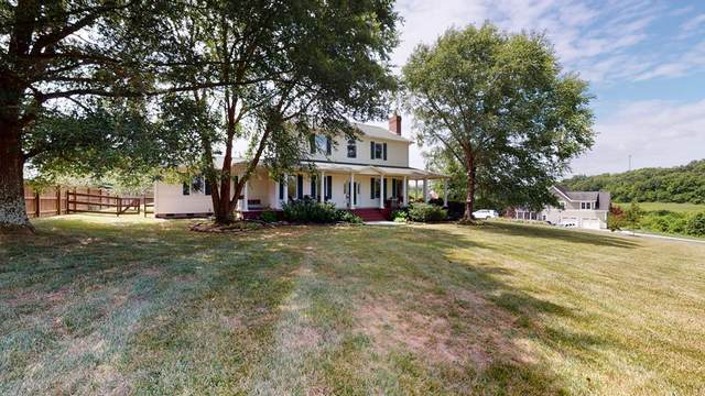 8510 Shackleford Lane, Knoxville, TN 37871 (#243774) :: Colonial Real Estate
