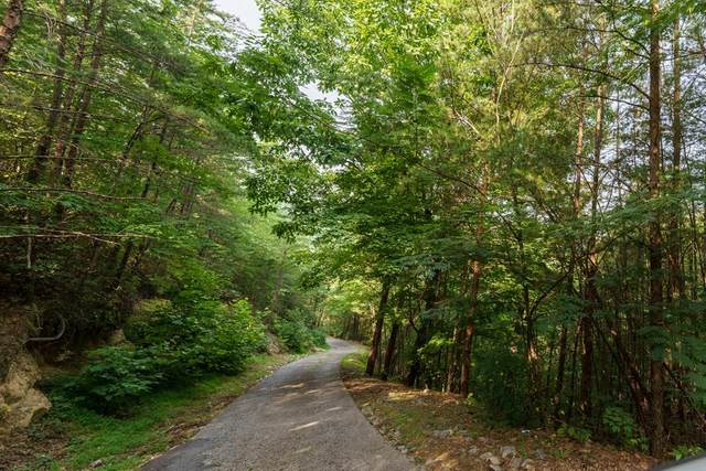 Lot 6 Eagle Pointe Way, Pigeon Forge, TN 37862 (#243777) :: The Terrell-Drager Team