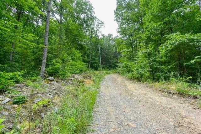 Lot 34 Goose Creek, Seymour, TN 37865 (#243780) :: Colonial Real Estate