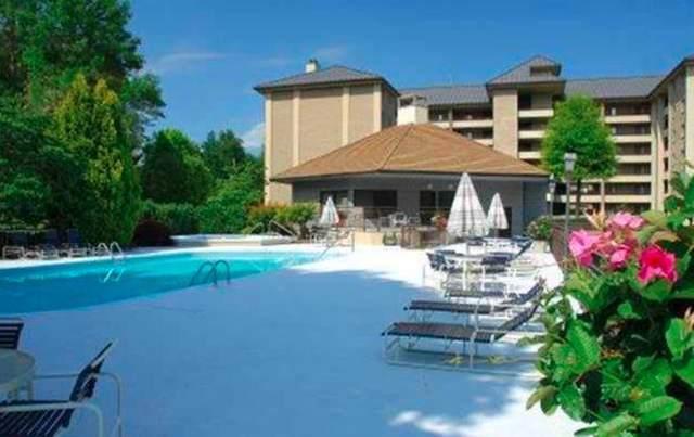 1704 Hidden Hills Rd Ste 404 Leconte Towers, Gatlinburg, TN 37738 (#243972) :: Colonial Real Estate