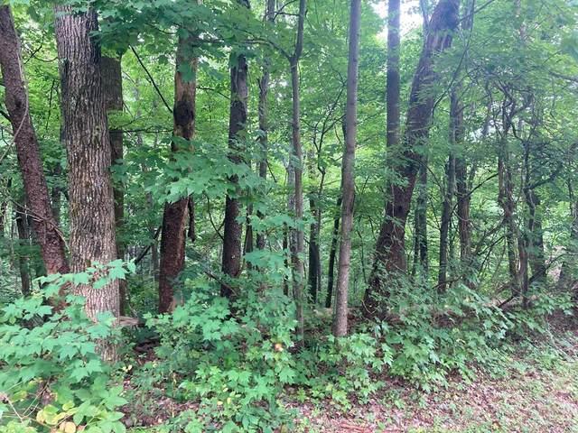 Lot 0238 Ridgecrest Dr, Sevierville, TN 37876 (#243989) :: Colonial Real Estate