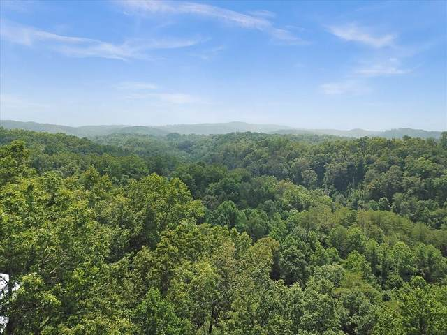 Ridgecrest Loop Lane, Sevierville, TN 37876 (#244311) :: Suzanne Walls with eXp Realty