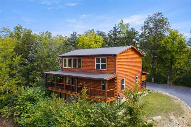 337 Alpine Mountain Way, Pigeon Forge, TN 37863 (#245252) :: The Terrell-Drager Team
