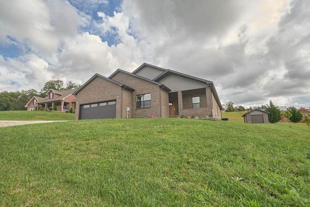1838 Ally Ln, Sevierville, TN 37876 (#245254) :: The Terrell-Drager Team
