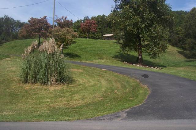 1315 Mccarter Hollow Rd, Sevierville, TN 37862 (#245391) :: Colonial Real Estate