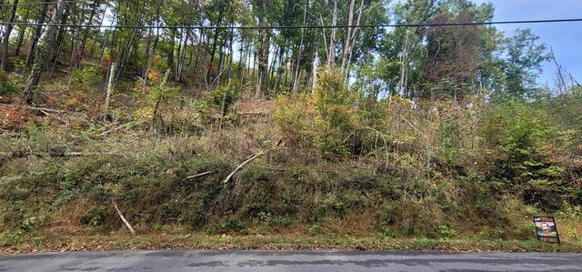 Lot 3BD Walker Trail, Sevierville, TN 37876 (#245604) :: Suzanne Walls with eXp Realty