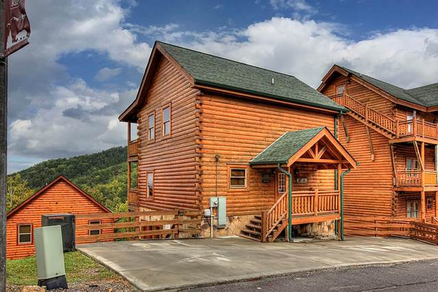 1244 Bird Nest, Sevierville, TN 37862 (#245686) :: Tennessee Elite Realty
