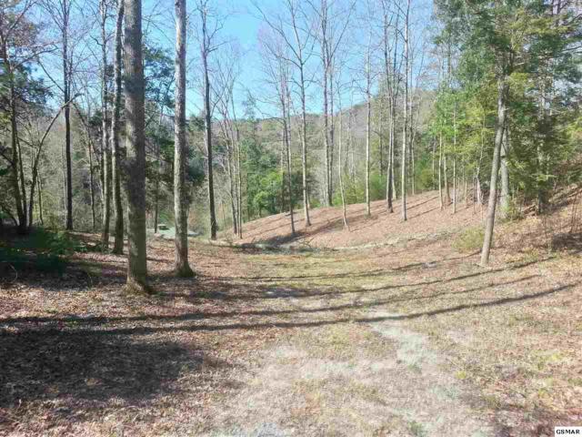 Lot 21 Maple Leaf Way Lot 21 Cedar Fa, Sevierville, TN 37862 (#203120) :: Billy Houston Group