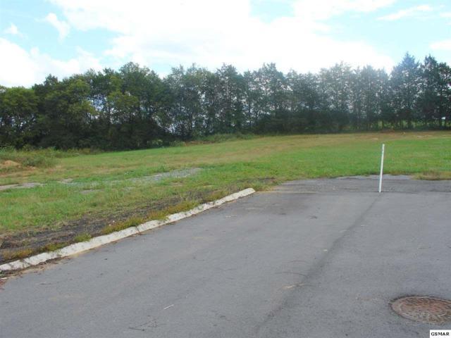 Lot 6R2 Newport Highway, Sevierville, TN 37876 (#205381) :: Prime Mountain Properties