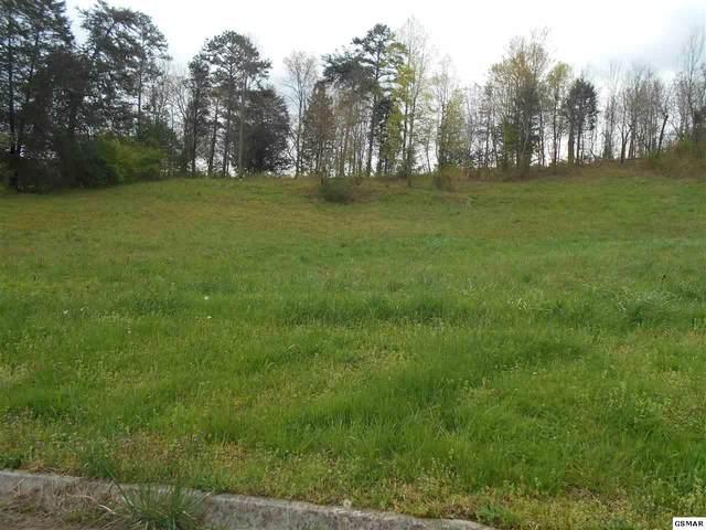 Lot 9 Briar Ridge Lane, Strawberry Plains, TN 37871 (#206545) :: Four Seasons Realty, Inc