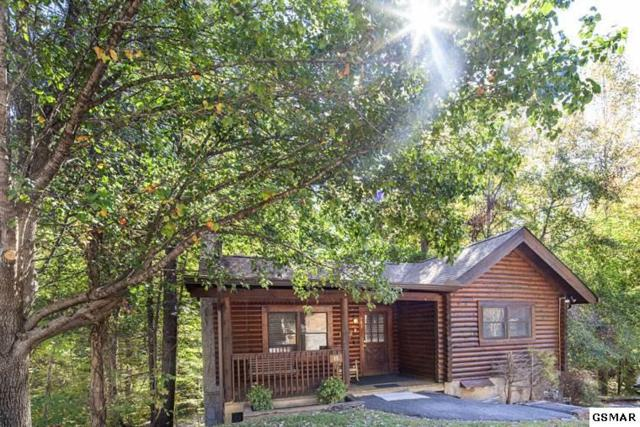 703 Osprey Way Cabin #55, Pigeon Forge, TN 37863 (#206680) :: Colonial Real Estate