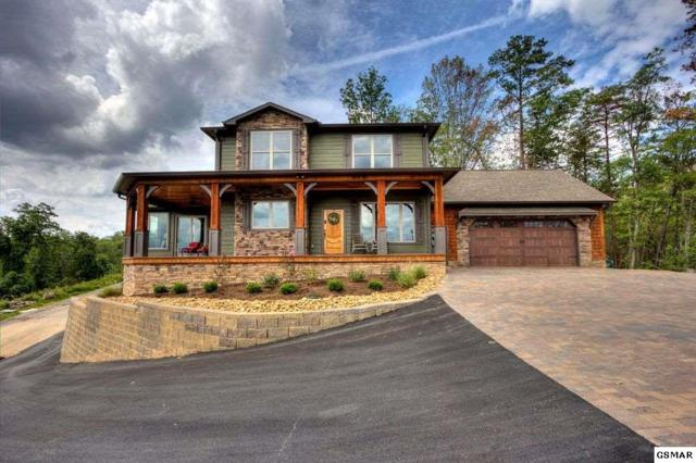 3265 Laurel Cove Trail, Sevierville, TN 37862 (#207271) :: Colonial Real Estate