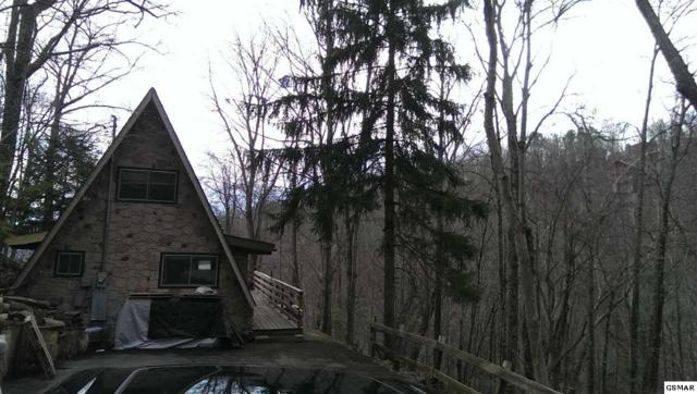 1131 Alpenrose Rd., Gatlinburg, TN 37738 (#208225) :: Four Seasons Realty, Inc