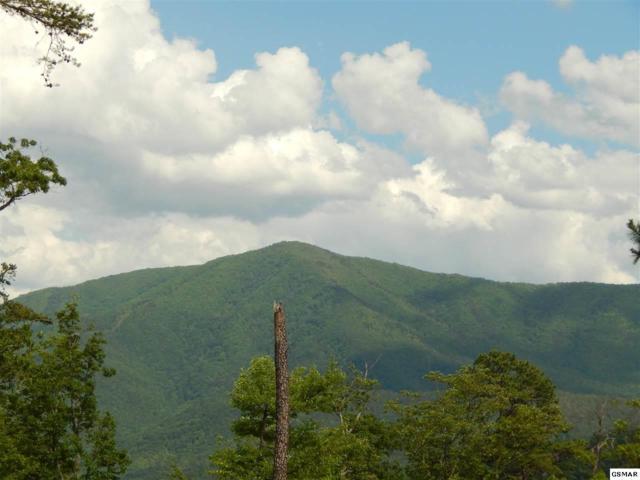 4228 Wears Valley Rd, Sevierville, TN 37862 (#209914) :: The Terrell Team