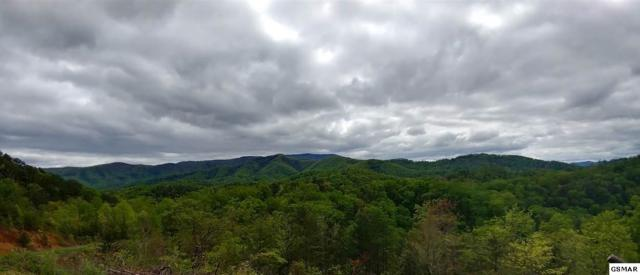 Lot Lot 9 Phase 4 Lighting Strike Dr, Sevierville, TN 37862 (#209946) :: Jason White Team | Century 21 Four Seasons