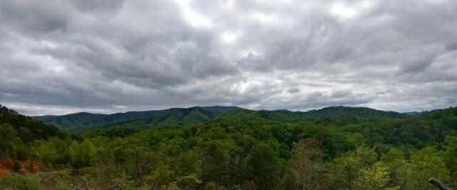 Lot 10 Phase 4 Lighting Strike Dr, Sevierville, TN 37862 (#209947) :: Four Seasons Realty, Inc