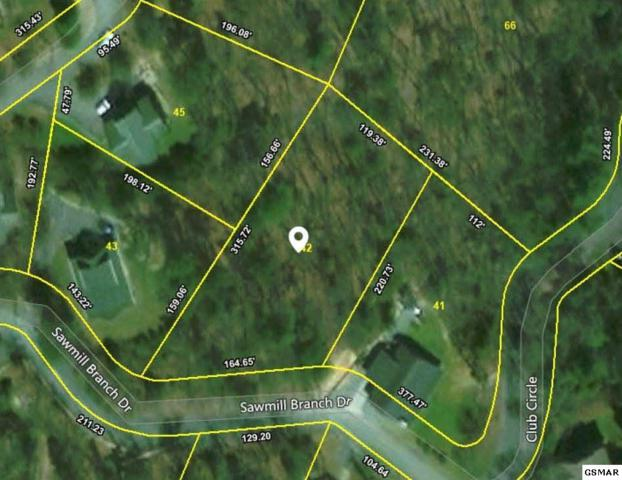 Lot 42 Sawmill Branch Dr, Sevierville, TN 37862 (#210304) :: The Terrell Team