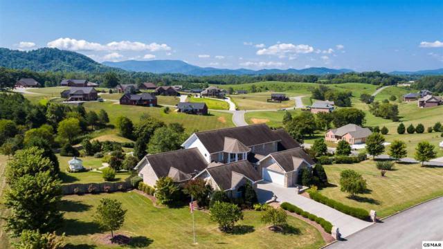 1424 Robert Ridge Road, Sevierville, TN 37862 (#210417) :: Billy Houston Group